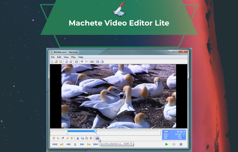 Screenshot of Machete Lite Video Editing Software