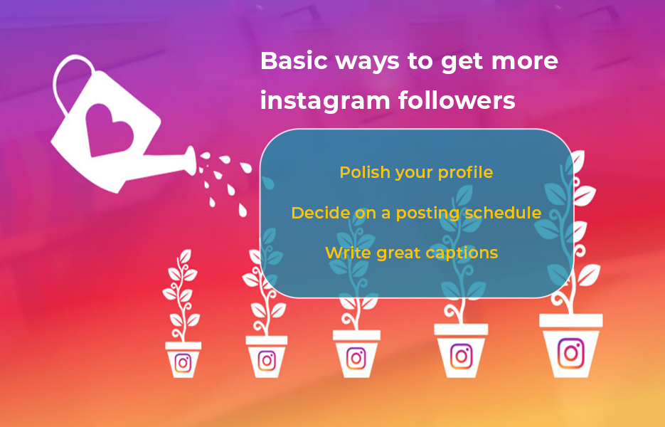 basic ways to get more instagram followers
