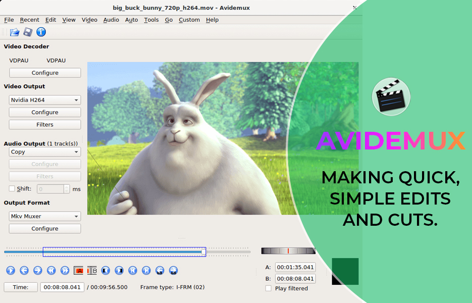 Screenshot of Avidemux Video Editing Software