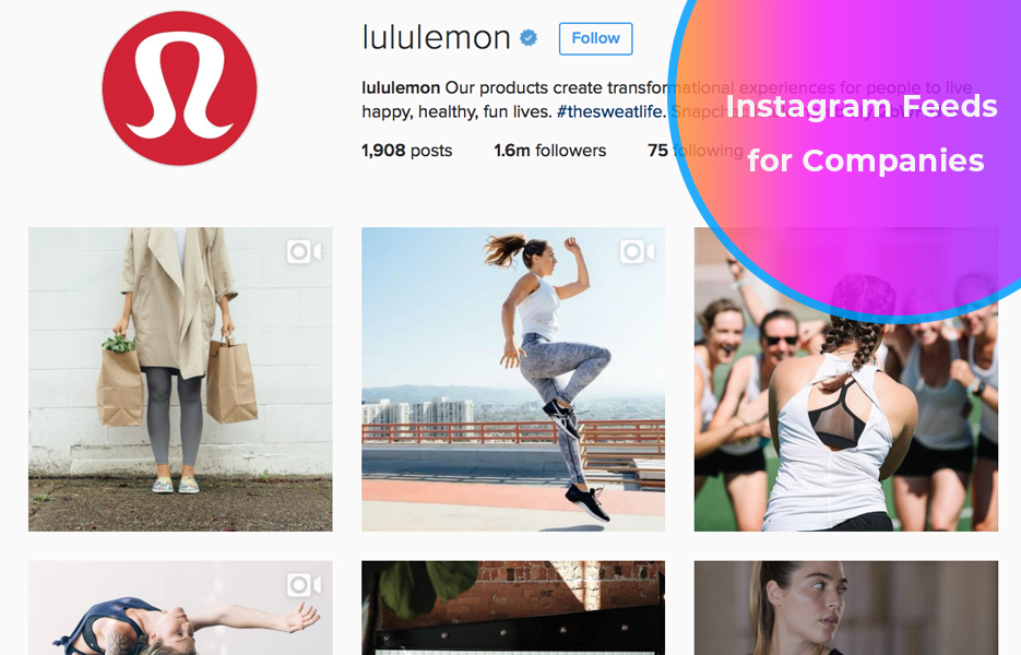 Instagram feeds for companies