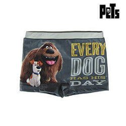Boys Swim Shorts Pets 71933 Grey 8 Years