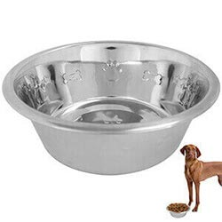 Feed Me Medium Metal Dog Pet Bowl