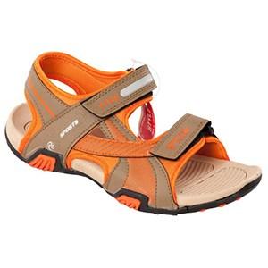 Footwear Shoes3
