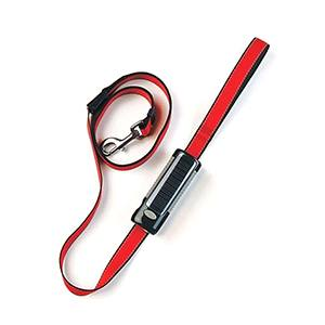 Gor Pets Dog E Lite 2 5cm X 180cm Black Lite Red Leash