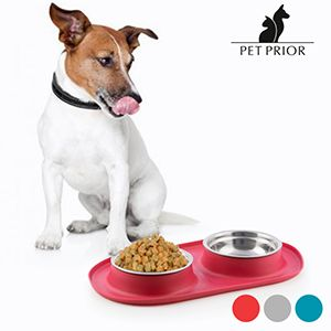 Pet Prior Slip Resistant Feeder Waterer For Animals