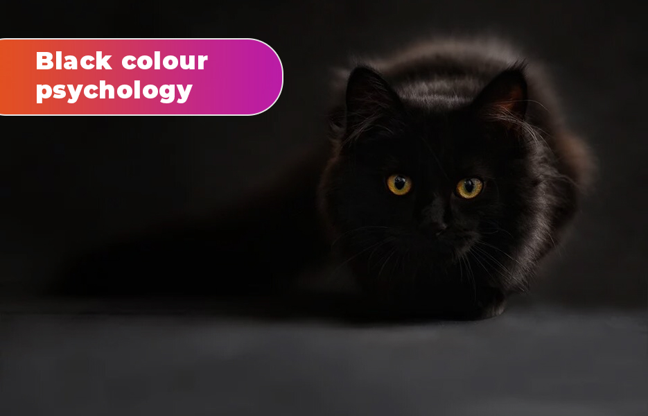 Black colour psychology