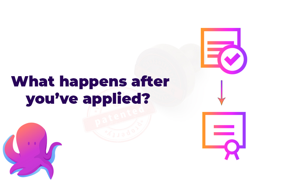 What happens after you've applied